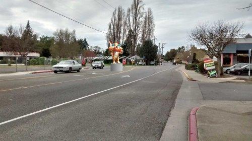 Slow Down Petaluma-Main